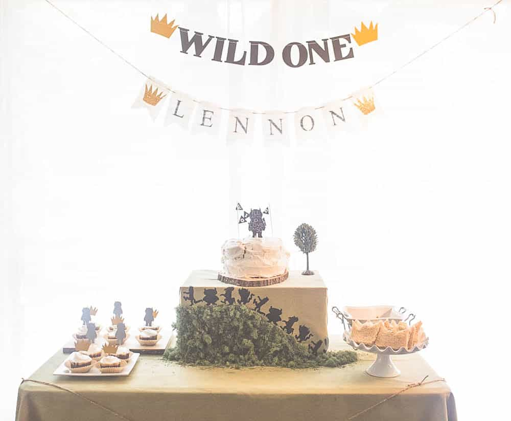 Wild One Themed Party