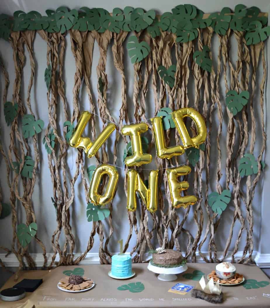 Wild One Themed Birthday Parties!