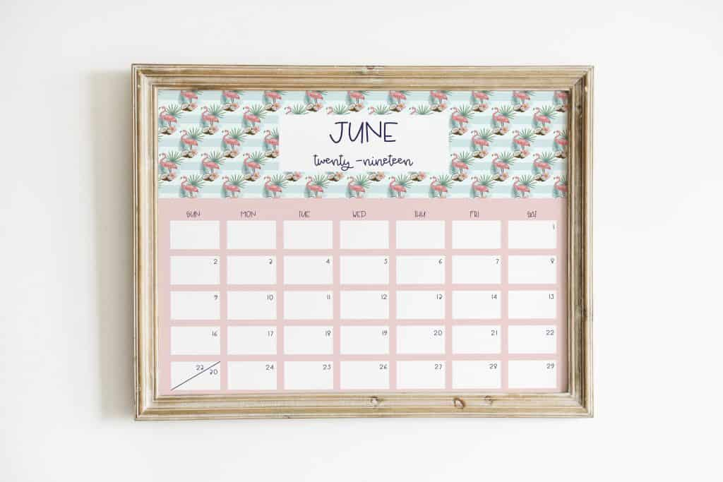 flamingo 2019 calendar june