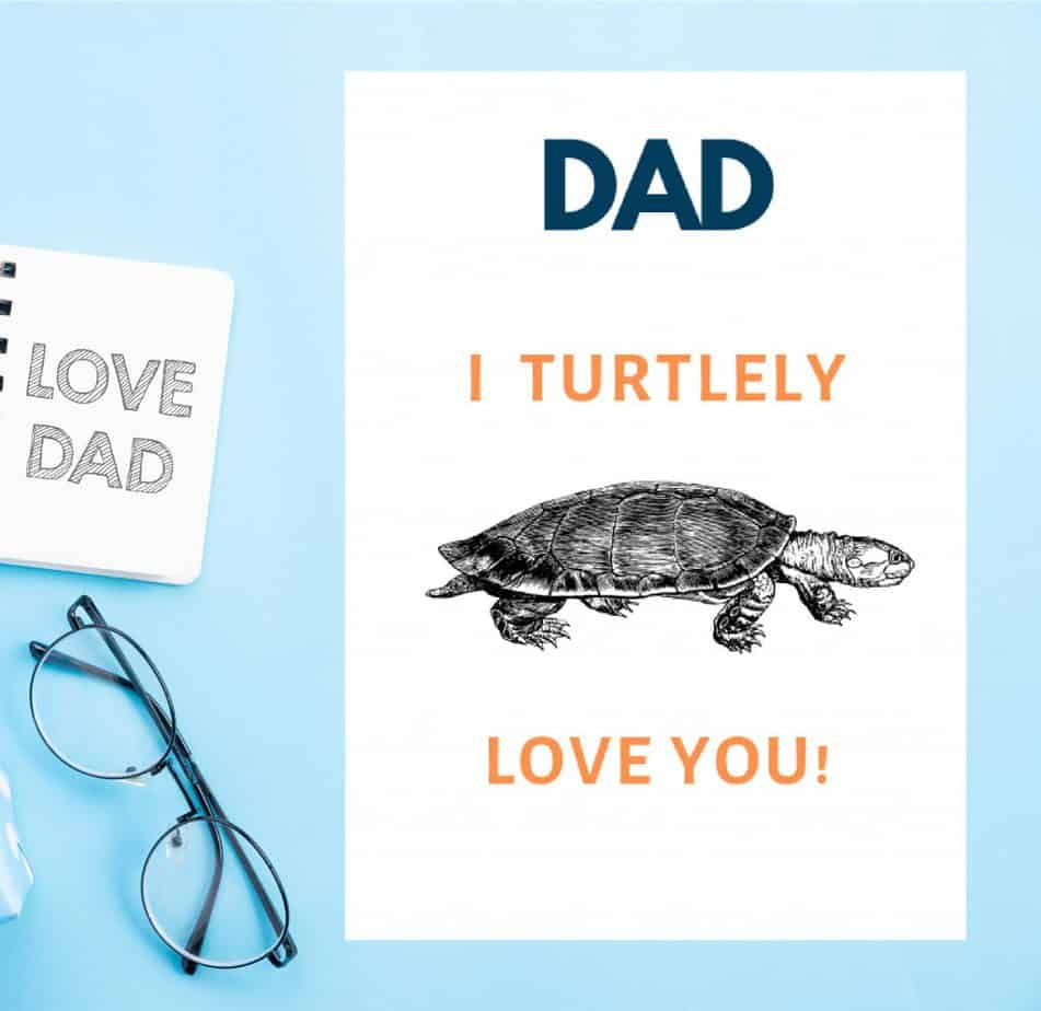 Father's Day Card - Turtle Love you white card