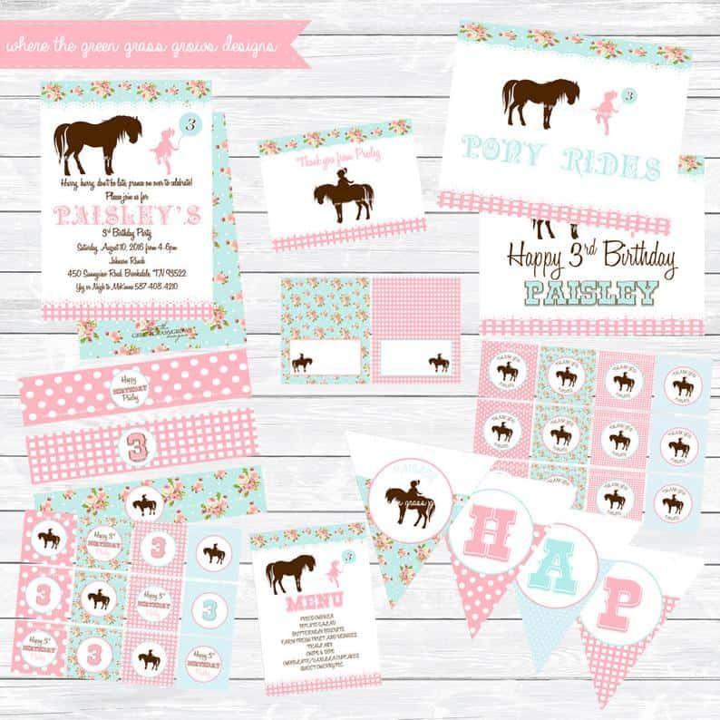 shabby chic birthday party pony bundle
