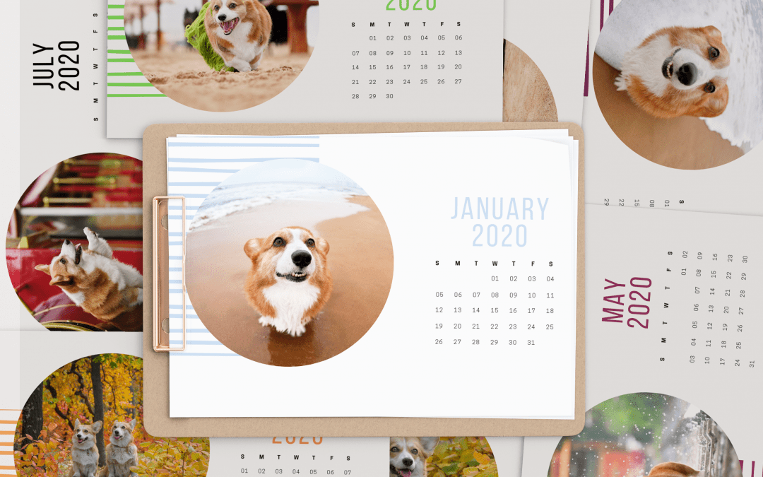 Free 2020 Printable Calendar – Corgis