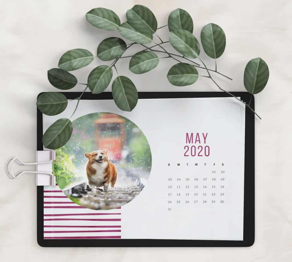 Corgi Calendar 2020 printable calendar