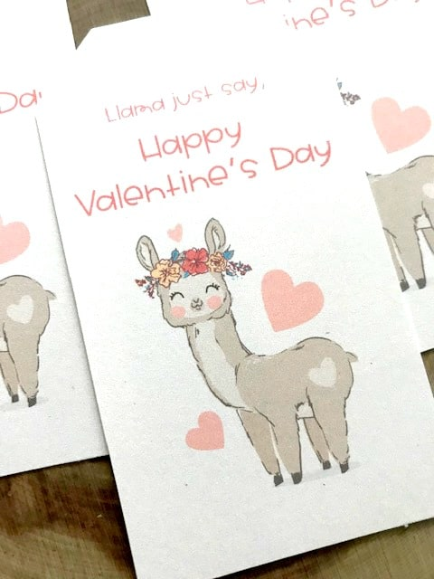 llama valentine's day tag close up