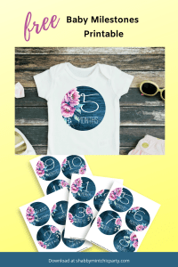 Baby milestone stickers peony design for baby girl