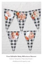 Free Editable Printable: Fall Baby Milestones Banner